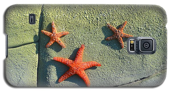 Starfish On The Rocks Galaxy S5 Case by Luther Fine Art