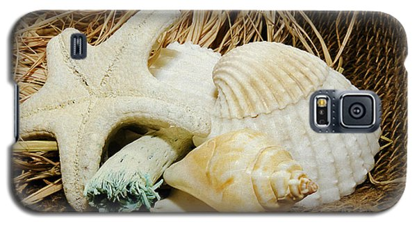 Starfish Shells And Driftwood Galaxy S5 Case by MaryJane Armstrong