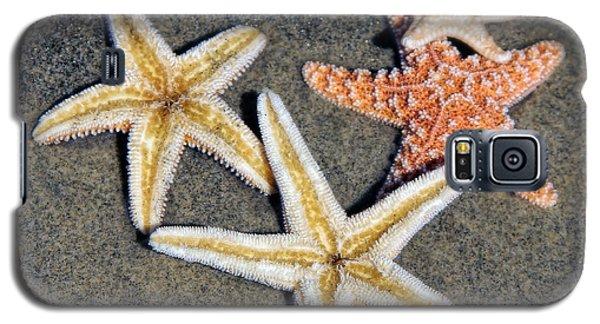 Starfish Galaxy S5 Case by Tammy Espino