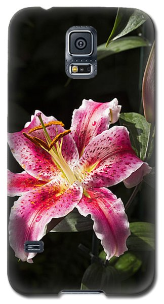 Stargazer Bloom And Bud Galaxy S5 Case