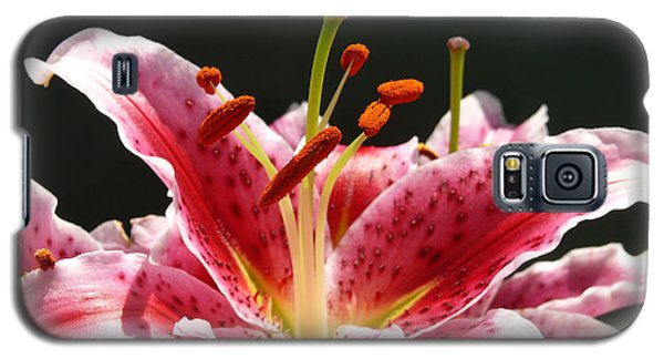 Galaxy S5 Case featuring the photograph Stargazer Lily by Maria Janicki