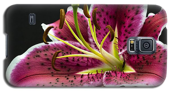 Galaxy S5 Case featuring the photograph Stargazer by Robert Pilkington