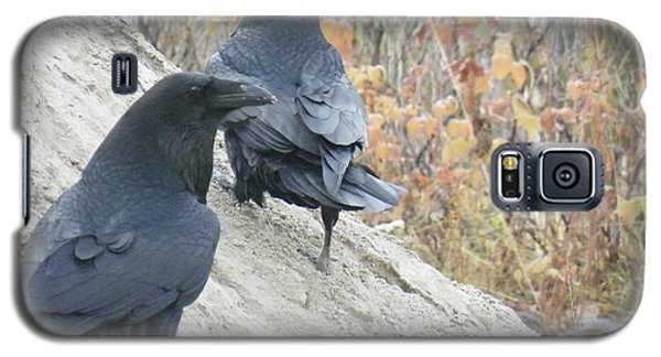 Galaxy S5 Case featuring the photograph Stark Raven by Brian Boyle