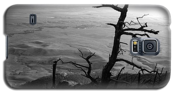 Galaxy S5 Case featuring the photograph Stark Tree by Mary Carol Story