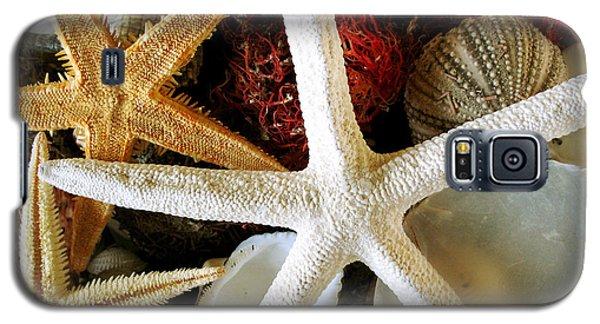 Stars Of The Sea Galaxy S5 Case