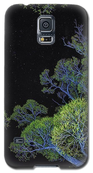 Stars Out Tonight Galaxy S5 Case by Nancy Marie Ricketts