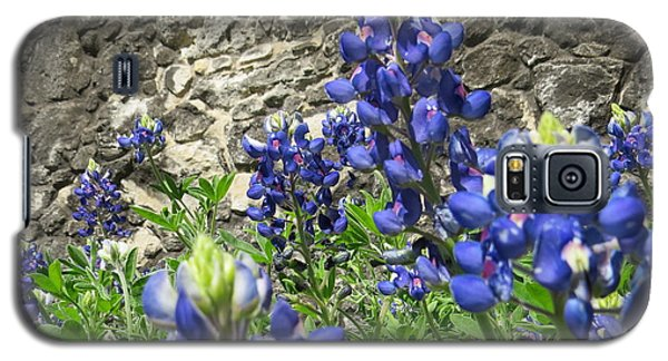 Galaxy S5 Case featuring the photograph State Flower Of Texas - Bluebonnets by Ella Kaye Dickey