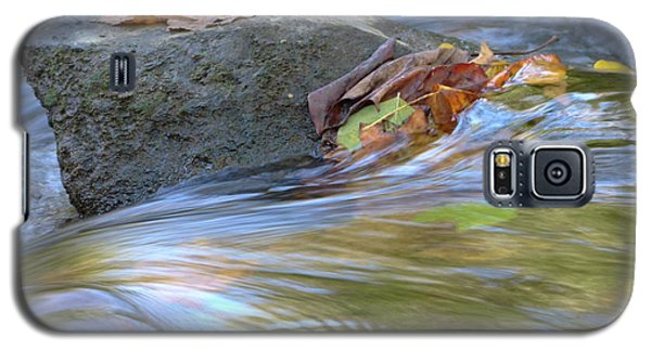 Galaxy S5 Case featuring the photograph Steadfast by Jane Ford