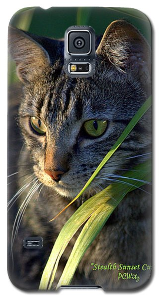 Stealth Sunset Curiosity Galaxy S5 Case