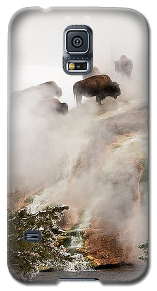 Galaxy S5 Case featuring the photograph Steamy Bison by Sue Smith