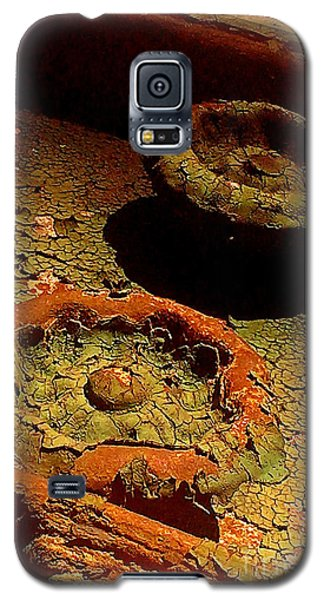 Galaxy S5 Case featuring the photograph Steel Flowers by James Aiken