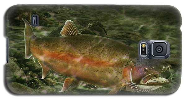 Steelhead Trout Spawning Galaxy S5 Case by Randall Nyhof