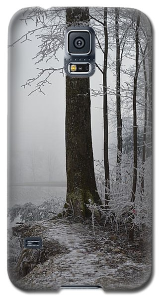 Steep And Frost Galaxy S5 Case by Felicia Tica