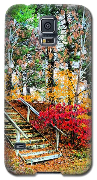 Step Into Autumn Galaxy S5 Case