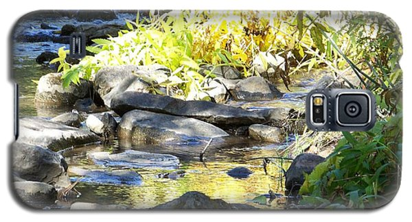 Galaxy S5 Case featuring the photograph Stepping Stones by Sheri Keith