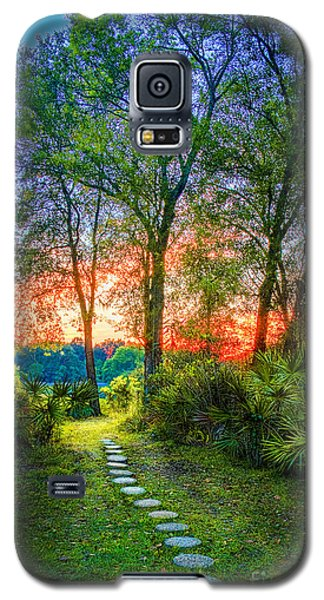Stepping Stones To The Light Galaxy S5 Case by Marvin Spates