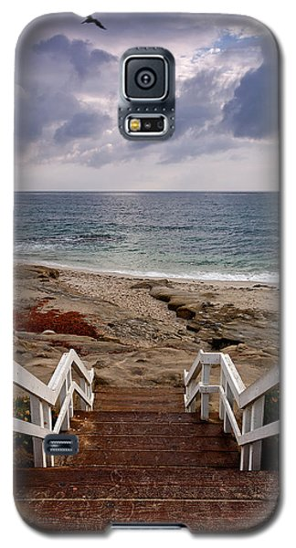 Steps And Pelicans Galaxy S5 Case