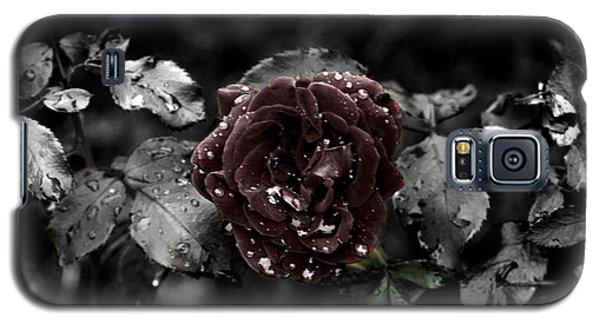 ...still A Rose Galaxy S5 Case