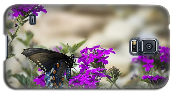 Still Beautiful Swallowtail Galaxy S5 Case by Penny Lisowski