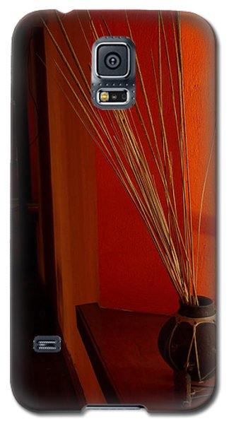 Galaxy S5 Case featuring the photograph Still Life In Baja by Alan Socolik
