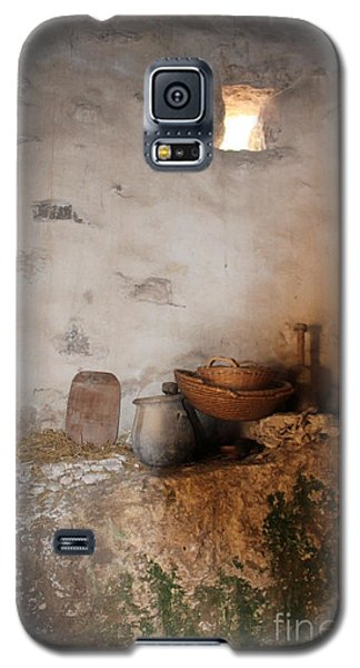 Galaxy S5 Case featuring the painting Still Life With Basket by Elizabeth Carr