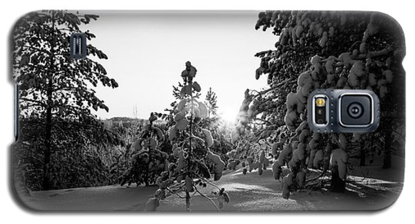 Still Standing In The Winter Sunset Bw Galaxy S5 Case