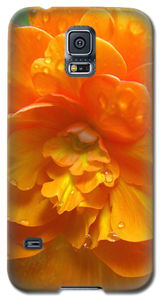 Still The One - Images From The Garden Galaxy S5 Case
