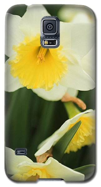 Galaxy S5 Case featuring the photograph Stillness by Julie Andel