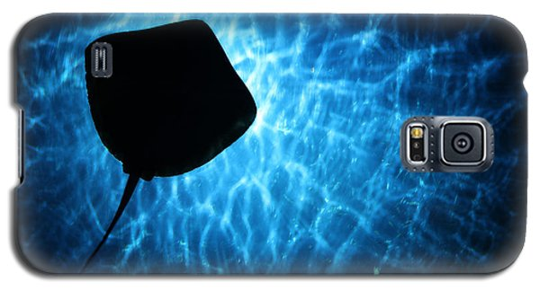 Stingray Silhouette Galaxy S5 Case