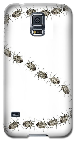 Stink Bugs I Phone Case Galaxy S5 Case