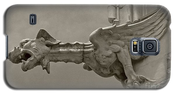 St.johns Watcher II Galaxy S5 Case by Dodie Ulery