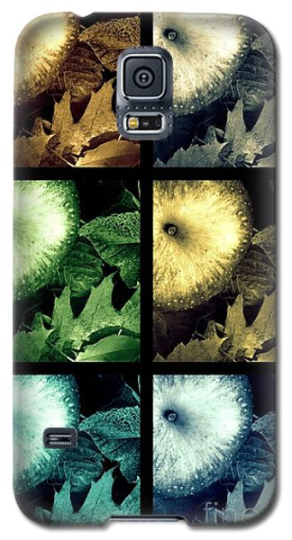 Stone Apples Galaxy S5 Case by France Laliberte
