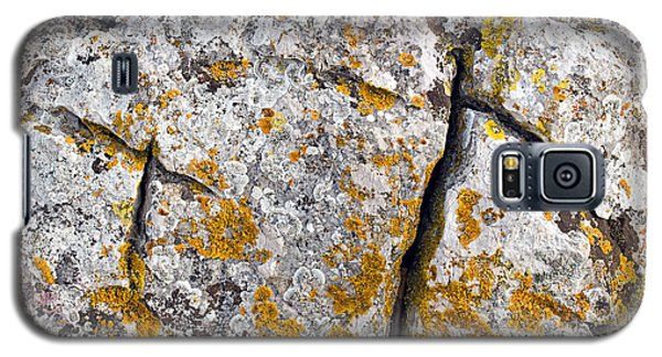 Stone Background Galaxy S5 Case by Sinisa Botas
