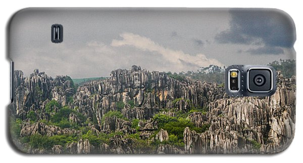 Stone Forest 2 Galaxy S5 Case