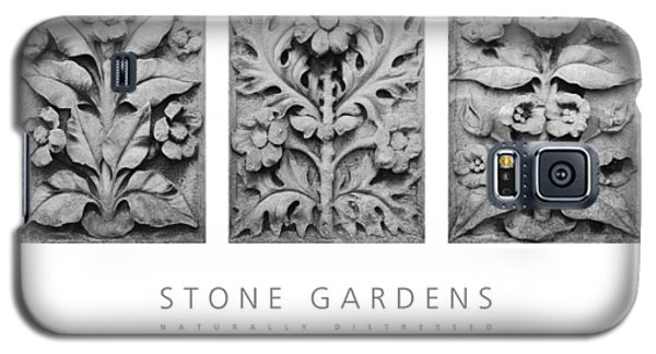 Stone Gardens 1 Naturally Distressed Poster Galaxy S5 Case by David Davies