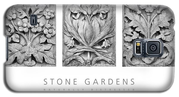 Stone Gardens 2 Naturally Distressed Poster Galaxy S5 Case by David Davies