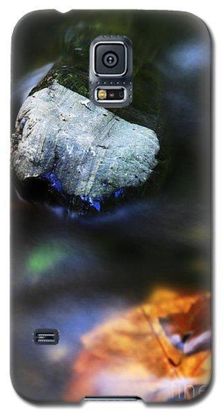 Galaxy S5 Case featuring the photograph Stone by Mariusz Czajkowski