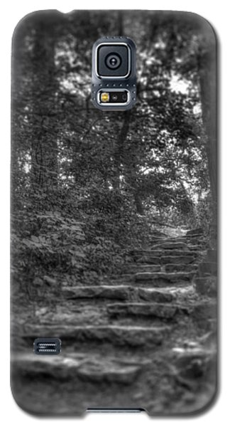 Stone Steps Galaxy S5 Case