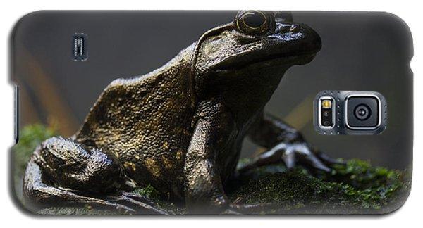 Stone Galaxy S5 Case