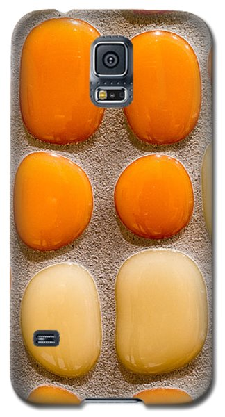 Stone Yolks Galaxy S5 Case