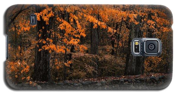 Stonewall In Autumn Galaxy S5 Case by GJ Blackman