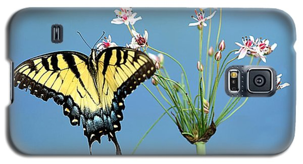Stop And Smell The Flowers Galaxy S5 Case