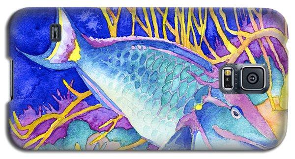 Stoplight Parrotfish Galaxy S5 Case