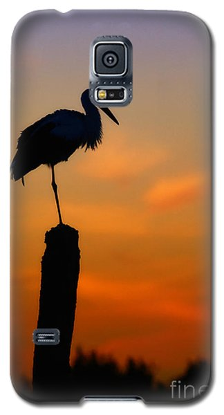 Storck In Silhouette High On A Pole Galaxy S5 Case by Nick  Biemans