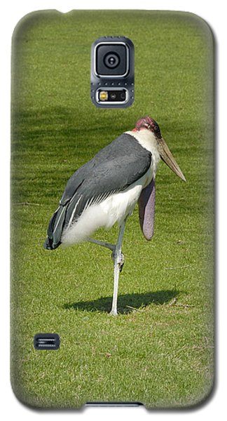 Galaxy S5 Case featuring the photograph Stork by Charles Beeler