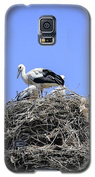 Storks Nesting Galaxy S5 Case by Photostock-israel