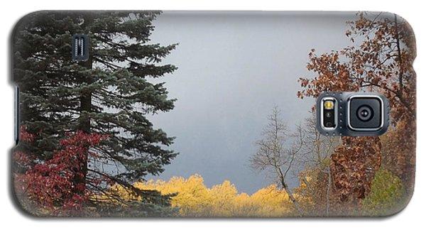 Storm In Hidden Gardens Galaxy S5 Case by Bill Woodstock