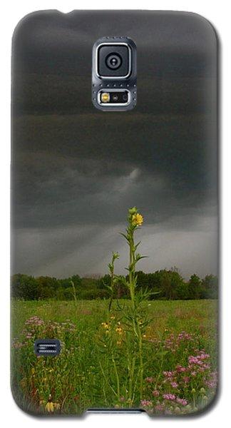 Storm Is Nigh Galaxy S5 Case by Tim Good