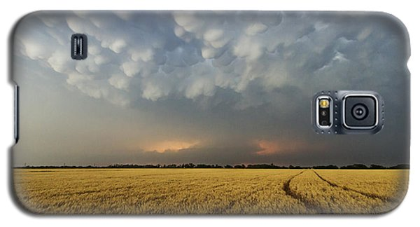 Storm Over Wheat Galaxy S5 Case