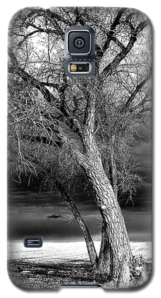 Galaxy S5 Case featuring the photograph Storm Tree by Steven Reed